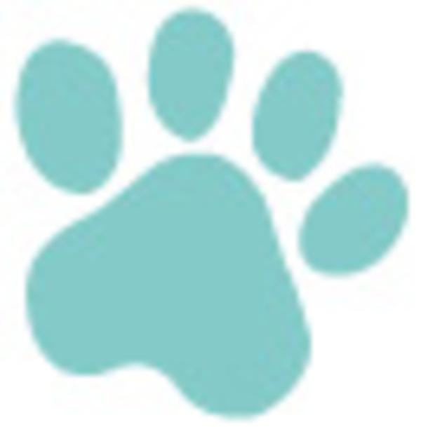 恒例チャリティーバザーが4月29日(土)に開催されます。サムネイル