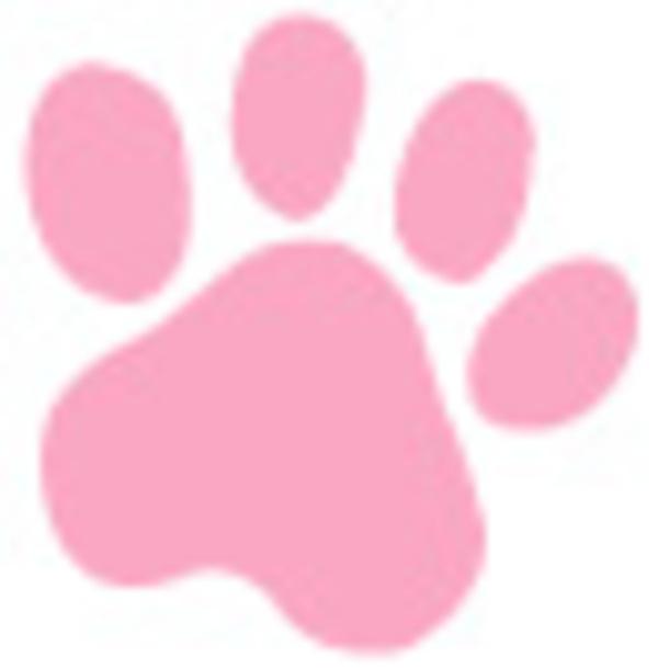 2019年4月15日(月)〜5月6日(月祝) 「ねこ ネコ 猫」展サムネイル